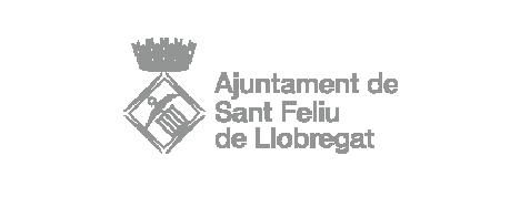 Ajuntament de sant feliu